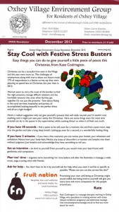 oveg xmas stres busters