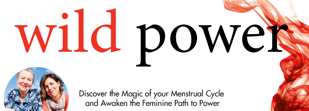 wild power the book
