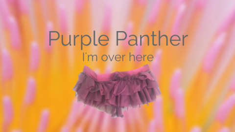 purple-panther