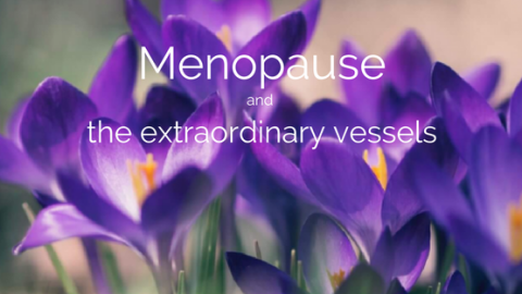 menopause-and-the-extraordinary-vessels