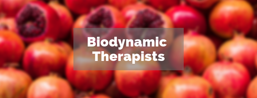 biodynamic-therapists
