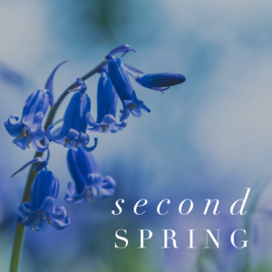 second-spring